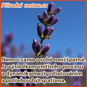 Prirodnicestou1