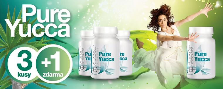 pure-yucca-31