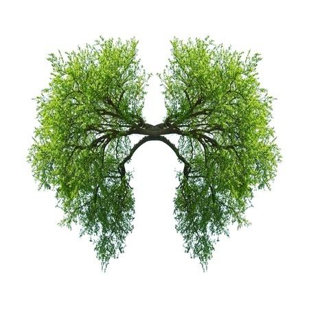 Psychické příčiny nemocí - dýchací systém, plíce