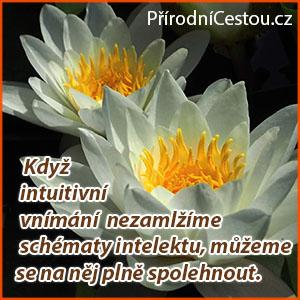 Prirodnicestou4