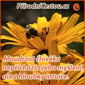prirodnicestou3