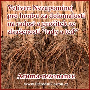 aroma-vetiver